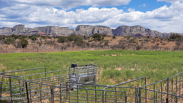 Riding and Roping Arena with Breathtaking Views!